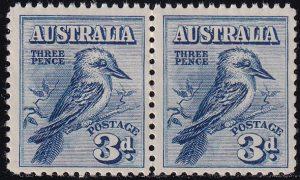 3d Kookaburra