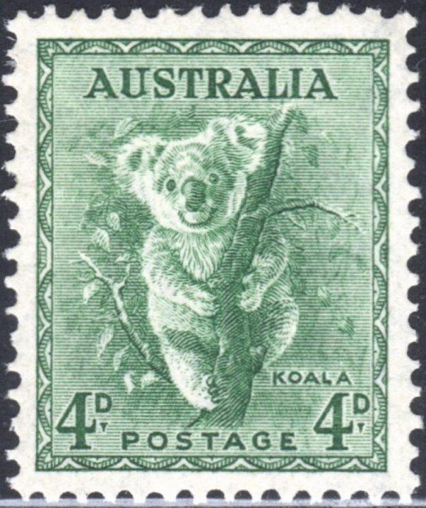 4d Koala p 13½ x 14