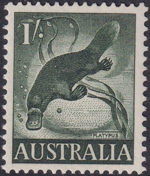 1/-Platypus