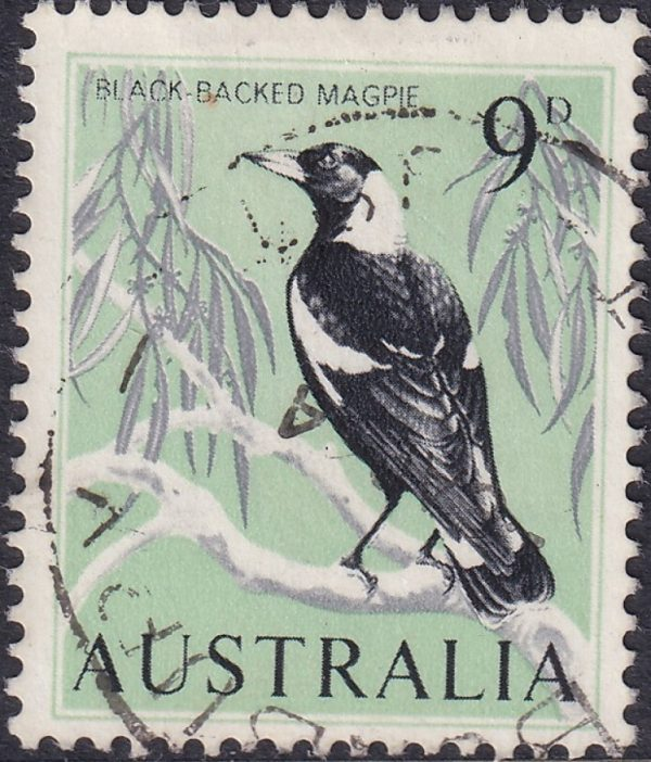 9d Black-backed Magpie