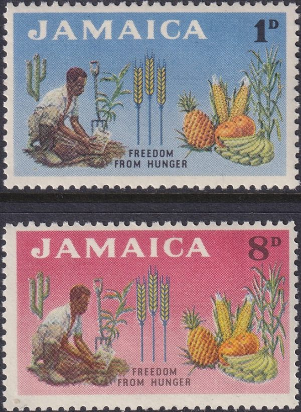 Jamaica Freedom from Hunger