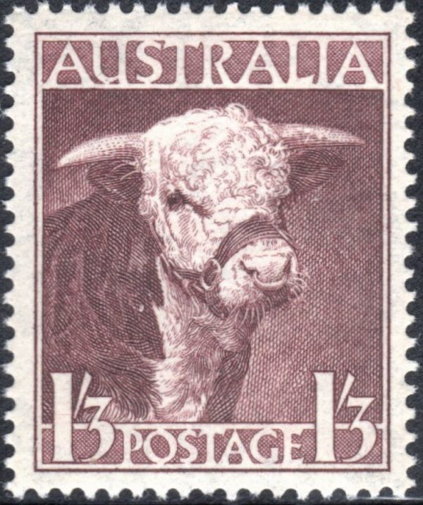 1/3d Hereford Bull - Watermark C of A