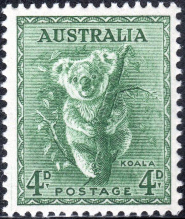 4d Koala - No Watermark