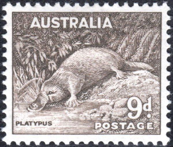 9d Platypus - No Watermark