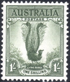1/- Superb Lyrebird - No Watermark