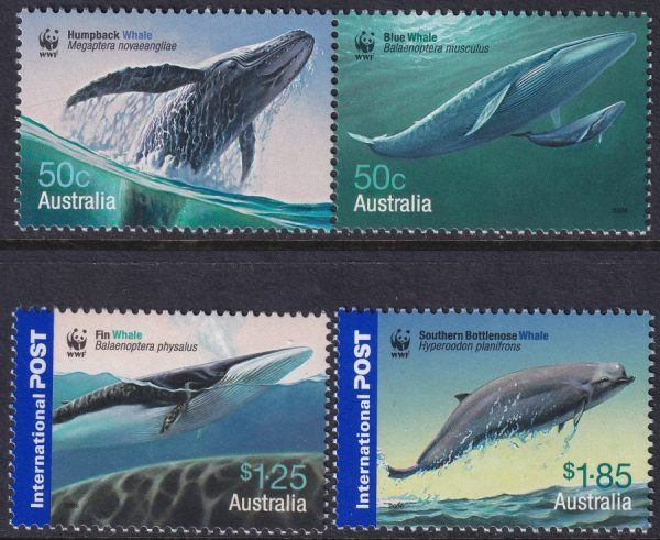 Endangered Species. Whales