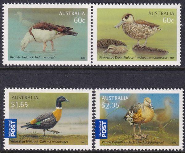 Australian Waterbirds