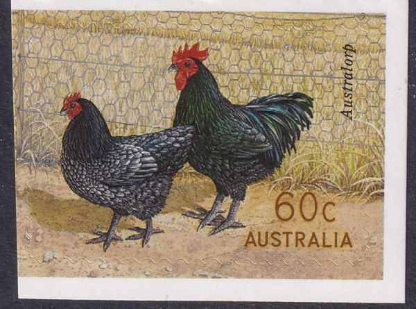 Australian Poultry Breeds - Self Adhesive