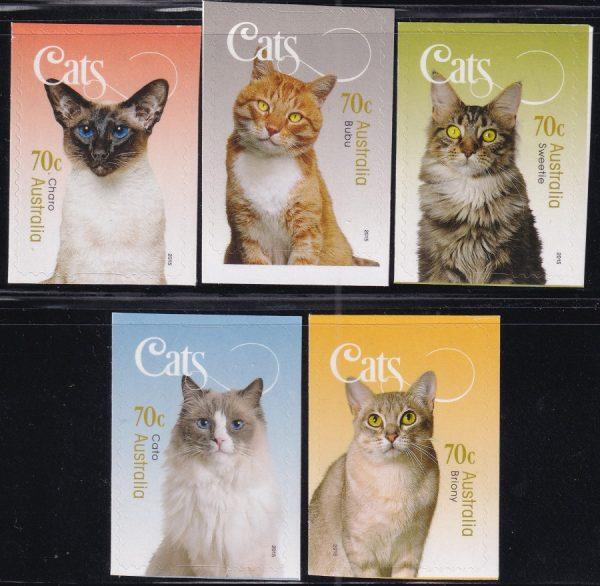 Cats - Self Adhesives